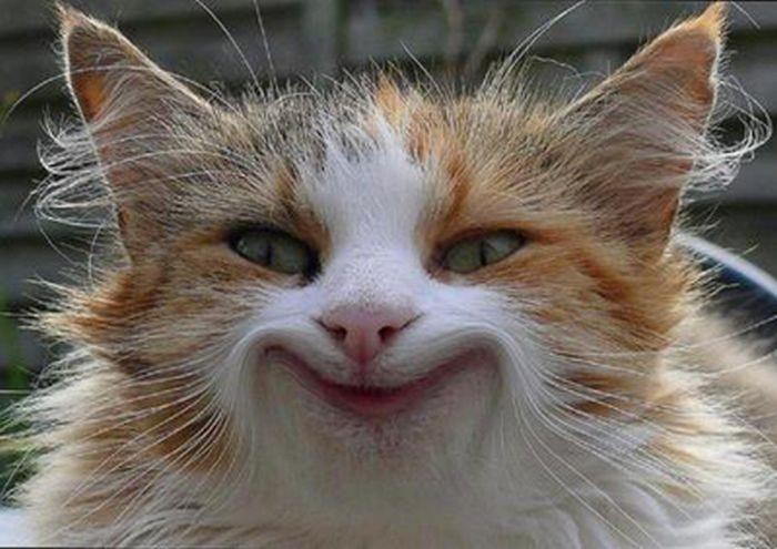 Умеете ли Вы улыбаться? Трёхминутный аутотренинг